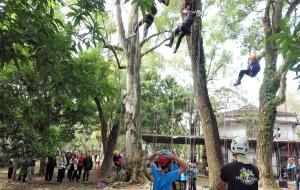 9.學生體驗攀樹課程3